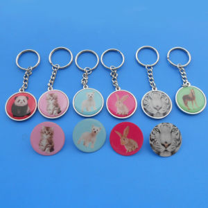 Cute Animal Printing Sticker Metal Key Tag pictures & photos