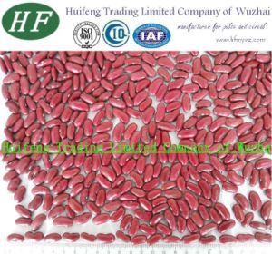 Shanxi Dark Red Kidney Beans