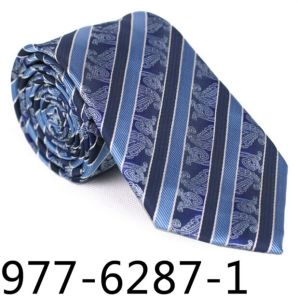 New Design Fashionable Stripe Paisley Necktie (6287-1) pictures & photos