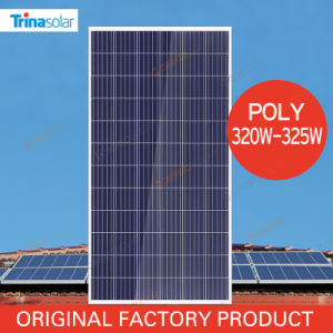 China Trina 320W 325W Solar Panel Price for Sale with Long Warranty pictures & photos