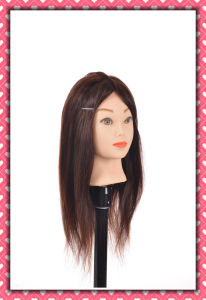100% Human Hair Mannequin Head 24inches for Beauty School Training pictures & photos