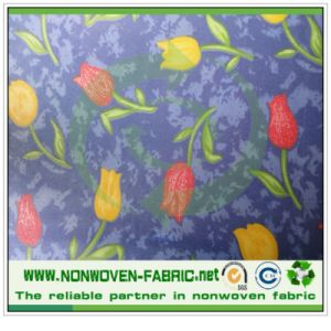PP Spunbond Nonwoven Fabric Painting Design pictures & photos