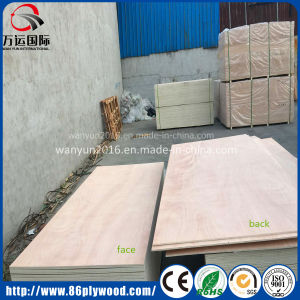 18mm Poplar Core Okoume Plywood pictures & photos