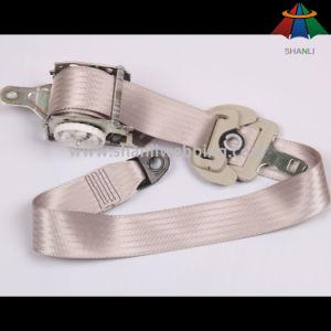 3-Point Car Seat Belt, Nylon Seat Belt Belts pictures & photos