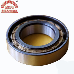 High Precision Long Service Life Cylinder Roller Bearing (n1006m) pictures & photos