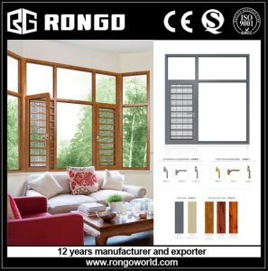 Alu. Double Glass Casement Window pictures & photos