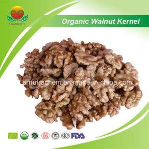 High Quality Walnut Kernel pictures & photos