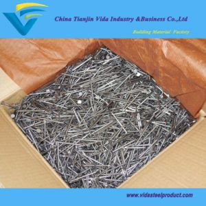 Iron Wire Nails with Lowest Prices From Biggest Factory pictures & photos