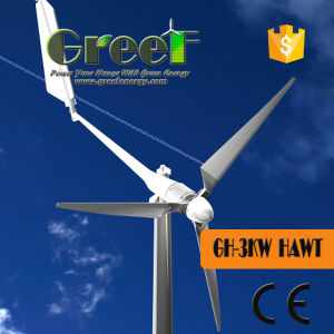 on Grid System 3kw Wind Turbine with SKF Bearing pictures & photos