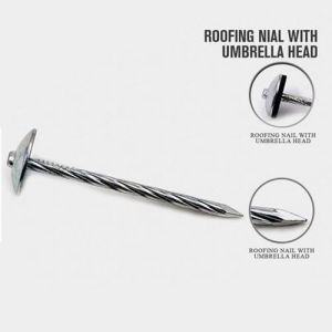 Hot Selling Building Roof Nails with Nice Price pictures & photos