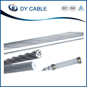 AAC (All Aluminum Conductor) for Overhead Transmission pictures & photos