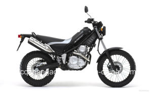 250cc YAMAHA Motorcycle Tricker pictures & photos