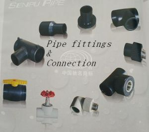 High Quality PE Pipe Fitting pictures & photos