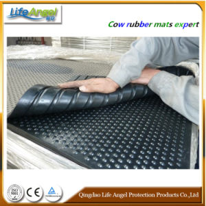 Stable Floor, Stable Rubber Mat, Stall Horse Rubbr Floor pictures & photos