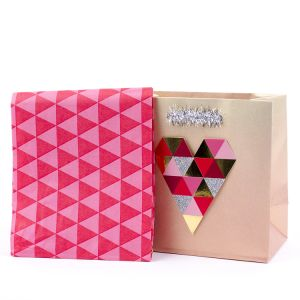 Festive Paper Gift Bag, Paper Gift Bag, Art Paper Gift Bag, Paper Shopping Bag, Kraft Paper Bag pictures & photos