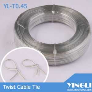 Clear Double Flat Twist Cable Tie (YL-T0.45) pictures & photos