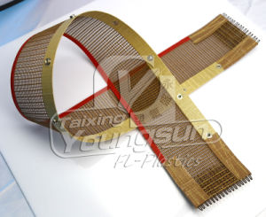 PTFE Mesh Filtration Fabric pictures & photos