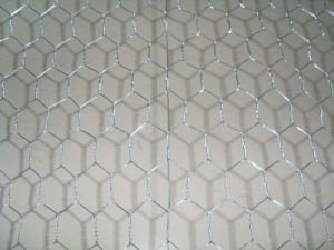 Hot Dipped Galvanized Hexagonal Wire Netting pictures & photos