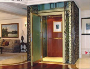 Fujizy Good Price for Villa Elevator with Standard Design pictures & photos