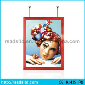 New Style Double Sided Light Box with Low Price