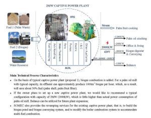 Typical Configuration of Palm Plantation Captive Power Plant pictures & photos