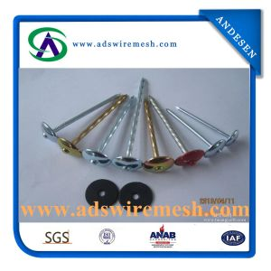Umbrella Head Galvanized Roofing Nail with Washer (ADS-RN-4) pictures & photos