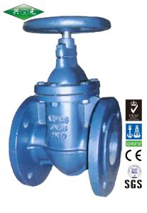 Flange Cast Iron Metal Sealed Inside Screw Nonrising Stem Type Pn10/16 F4 Gate Valve