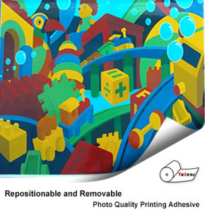 Repositionable and Removable Photo Quality Printing Adhesive pictures & photos