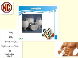 Isoleucine Top Quality Nutrition Supplement pictures & photos