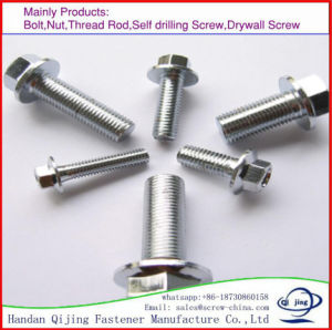Stainless Steel Flange Bolt pictures & photos