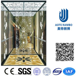 Home Hydraulic Villa Elevator with Italy Gmv System (RLS-249) pictures & photos