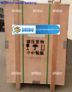 High Temperature Box Furnace for Heating Treatment 1800 300X300X300 27L pictures & photos