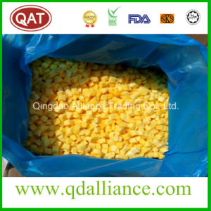 Quick Frozen Diced Mango with Good Price pictures & photos