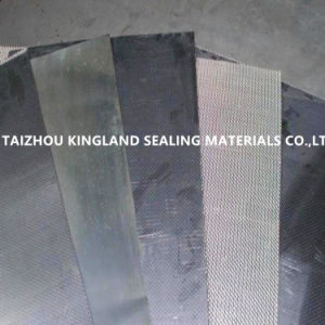 Perforated Metal Reinforced Composite Graphite Sheet pictures & photos