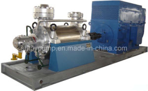 Boiler Pump (DG) pictures & photos