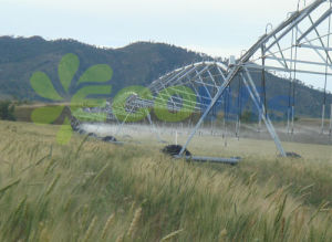 Centre Pivot Sprinkler Irrigation System for Agriculture pictures & photos