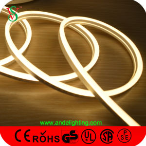 Outdoor Flexible Neon Sign LED Sign pictures & photos