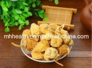 Hot Sale Maca Powder, Maca Root Powder, Maca Extract pictures & photos