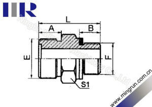 Metric Male O-Ring /Bsp Male O-Ring Adapter Hydraulic Nipple (1EG)