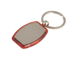 Cheap Metal Promotional Plastic Key Ring with Custom Logo (F1008) pictures & photos