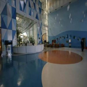 Swimming Pool Flooring for Indoor/Outdoor Used pictures & photos