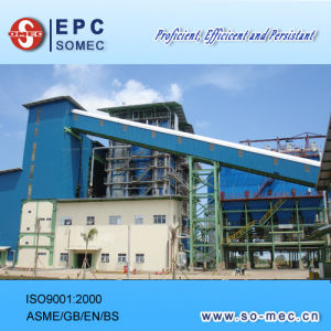Multi-Fuel Power Plant Equipment Supplier pictures & photos