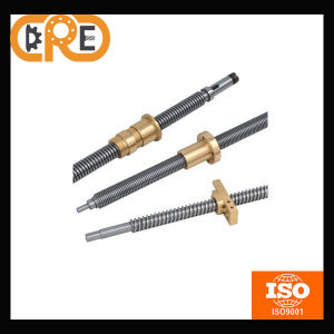Stainless Steel and Long Life for Industrial Machines Acme and Lead Screw pictures & photos