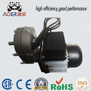 China Ac Single Phase Reversible Slow Speed 250w Electric