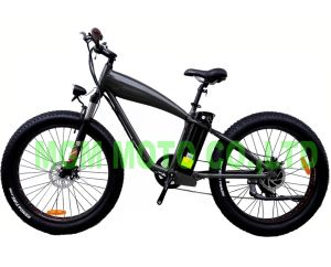 48V 500W Big Power Wde Tire Electric Bicycle pictures & photos