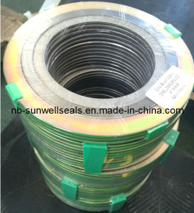 Wri Swg Spiral Wound Gaskets (SUNWELL) pictures & photos
