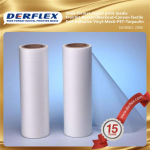 Transparent Perforated Vinyl for Digital Printing pictures & photos