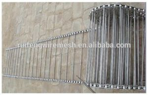 Stailess Steel Wire Weaved Ladder Belt for Food Belt Conveyor pictures & photos
