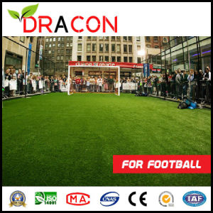 Professional Outdoor Soccer Play Fake Grass pictures & photos