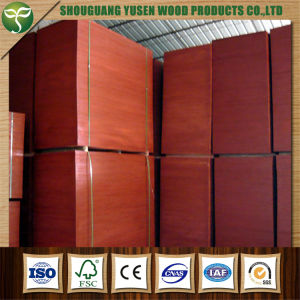 Film Faced/Coated Plywood for Construction pictures & photos
